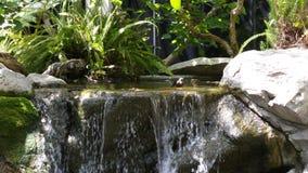 Kleiner Teich mit Wasserfall Lizenzfreie Stockbilder