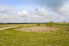 Kleiner Teich und das Tal von York Lizenzfreie Stockfotos