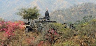 Kleiner Tempel im Boden des Jain Tempels von Ranakpurs Stockfotografie