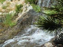 Kleiner Wasserfall über Felsen und Anlagen lizenzfreie stockbilder