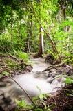 Kleiner Wasserfall. Lizenzfreie Stockfotos