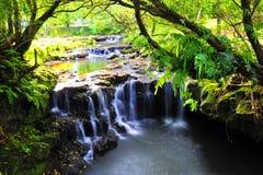 Kleiner Wasserfall 3 Lizenzfreie Stockfotos