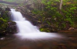Kleiner Wasserfall auf Doyles Fluss in Nationalpark Shenandoah, VI Stockbilder