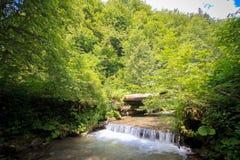 Kleiner Wasserfall auf einem Gebirgsfluss stockbild