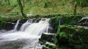 Kleiner Wasserfall in Brecon erleuchtet Nationalpark in Südwales im April Stockfotos