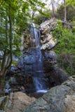 Kleiner Wasserfall in den Felsen im Wald stockbild