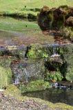 Kleiner Wasserfall in der englischen Landschaft Lizenzfreie Stockbilder
