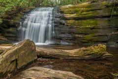 Kleiner Wasserfall in einem Wald lizenzfreies stockfoto