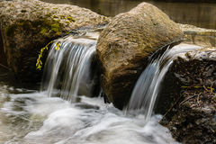 Kleiner Wasserfall in einem Waldfluß Lizenzfreie Stockbilder