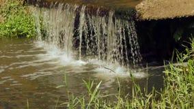 Kleiner Wasserfall im Garten stock video