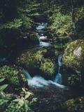 Kleiner Wasserfall im Holz Stockbild