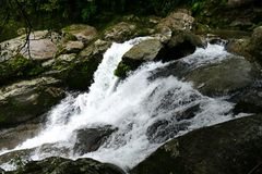 Kleiner Wasserfall im Urwald von Yakushima, Japan lizenzfreie stockfotografie