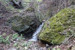 Kleiner Wasserfall im Wald lizenzfreies stockfoto