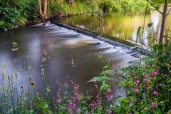 Kleiner Wasserfall mit Blumen im Vordergrund Stockbild