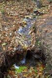 Kleiner Wasserfall mit gefallenen Blättern stockfotografie