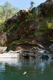 Kleiner Wasserfall mit Smaragdwasserpool stockfotos