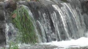 Kleiner Wasserfall nahe dem Møllehuset stock footage