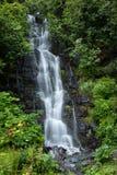 Kleiner Wasserfall nahe Valdez See in Alaska umgab durch grüne T Lizenzfreie Stockfotografie