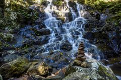 Kleiner Wasserfall in Nationalpark Springbrook stockfoto