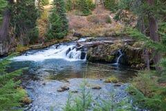 Kleiner Wasserfall in oberem Rogue River Stockbilder