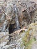 Kleiner Wasserfall, See-Bezirk lizenzfreie stockfotos