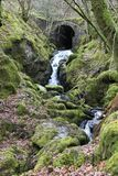 Kleiner Wasserfall und Brücke, stockfoto