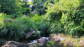 Kleiner Wasserfallstrom stock video