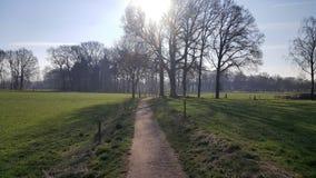 Kleiner Weg im Ackerland Lizenzfreies Stockbild