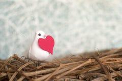 Kleiner weißer Vogel im Nest mit rotem Herzen Valentinsgruß `s Tag Se Stockbilder