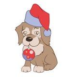 Kleiner Welpe in Santa's-Hut hält Weihnachtsdekoration Lizenzfreie Stockbilder