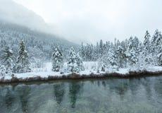 Kleiner Winterstrom mit schneebedeckten Bäumen Lizenzfreies Stockfoto