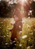Kleiner Zauberer auf dem Gebiet Stockbilder