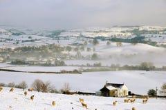 Kleines Ackerland im Schnee deckte Hügel ab Lizenzfreie Stockfotografie