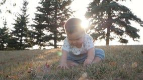 Kleines Baby, das auf Gras im Park sitzt Schönes Babyporträt in der Natur stock abbildung