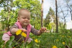 Kleines Baby, das im Park auf dem Gras auf a spielt  Lizenzfreies Stockfoto
