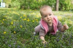 Kleines Baby, das im Park auf dem Gras spielt Lizenzfreie Stockbilder