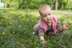 Kleines Baby, das im Park auf dem Gras spielt Stockfotografie