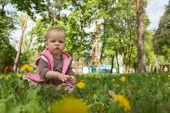 Kleines Baby, das im Park spielt Stockfotografie