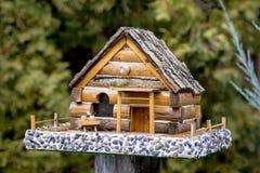 Kleines Blockhaus für Vögel Stockbild