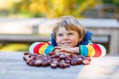 Kleines blondes Kind, das mit Kastanien im Herbstpark spielt Stockbilder