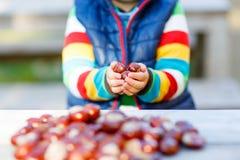 Kleines blondes Kind, das mit Kastanien im Herbstpark spielt Stockbild