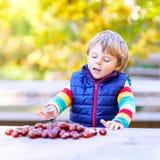 Kleines blondes Kind, das mit Kastanien im Herbstpark spielt Stockfoto