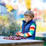 Kleines blondes Kind, das mit Kastanien im Herbstpark spielt Lizenzfreie Stockbilder