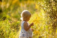 Kleines blondes Mädchen in einem Kleid Lizenzfreies Stockfoto