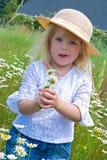 Kleines blondes Mädchen mit wildem Gänseblümchen Stockfotos