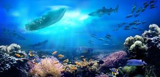 Kleines Boot im Ozean lizenzfreies stockfoto