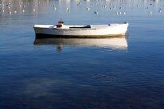 Kleines Boot und Seemöwen Stockfotografie
