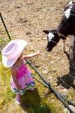 Kleines Cowgirl Stockfoto