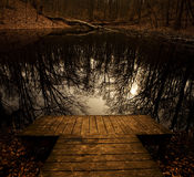 Kleines Dock mit bloßen Bäumen reflektierte sich im Teich Stockbilder