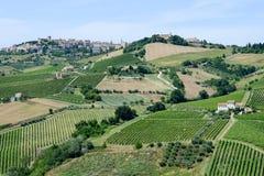 Kleines Dorf Acquaviva Picena auf Marken Stockbild